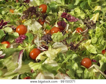 Salad Full Frame Background - Stock Image