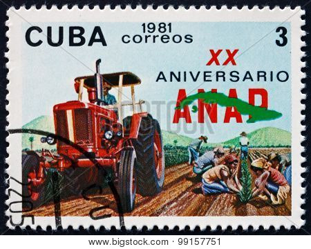 Postage Stamp Cuba 1981 Tractor And Workers