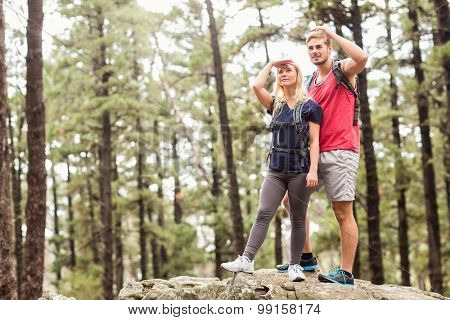 Young happy hiker couple looking away in the nature