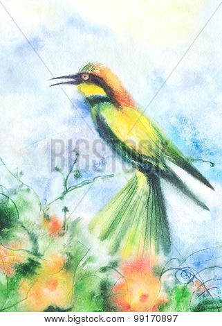 Illustration Of A Tropical Bird