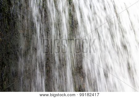Image of waterfall and vegetation under water