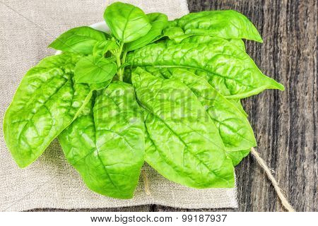 Spinach on linen