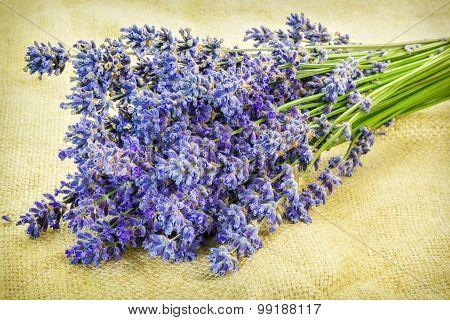 Lavender on rustic jute fabric