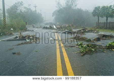 Debri In Road During Typhoon