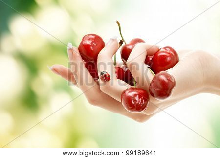 people, summer, fruits hand berries concept - female hand full of red cherries over green natural background