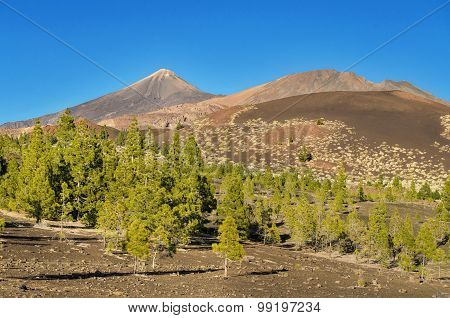 El Teide national park Tenerife Canary island Spain.