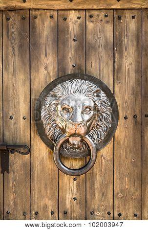 Door Knocker Shaped Lion's Head.