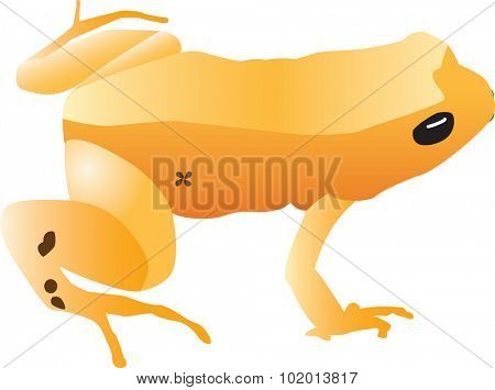 An illustration of a yellow frog.