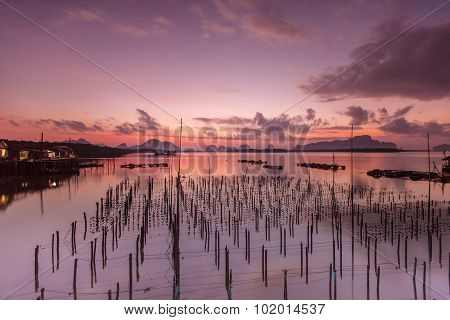 The Oyster Farms At Sam Chong Tai, Phang Nga Province.thailand