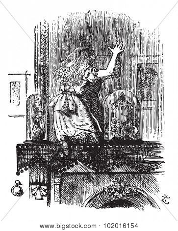 Into the Looking Glass Room - Through the Looking Glass and what Alice Found There original book vintage engraving.