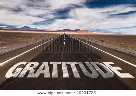 Gratitude written on desert road