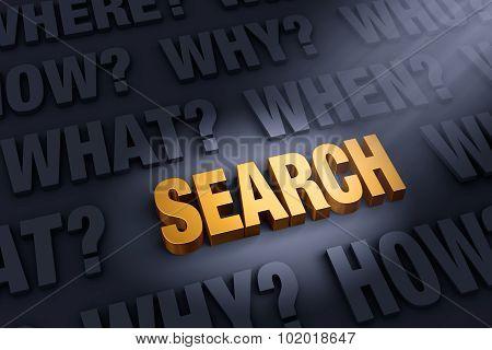 Questions Illuminate Search