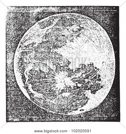 Full Moon Photograph taken by Prof. H. Draper, New York, vintage engraving. Old engraved illustration of Full Moon Photograph.
