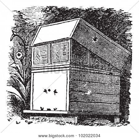 Beehive or Beehives, vintage engraving. Old engraved illustration of Beehive. Trousset encyclopedia (1886 - 1891).