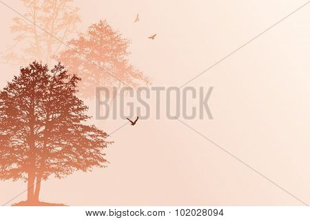 A peaceful morning landscape, vector illustration