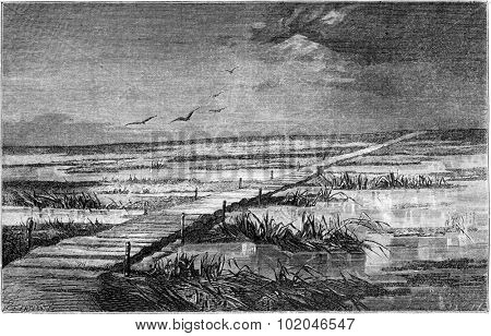 Route around Volmar (Livonia), vintage engraved illustration. Le Tour du Monde, Travel Journal, (1865).