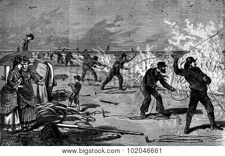 Fishing for mullet on the beach of Long-Island (United States), vintage engraved illustration. Journal des Voyage, Travel Journal, (1880-81).