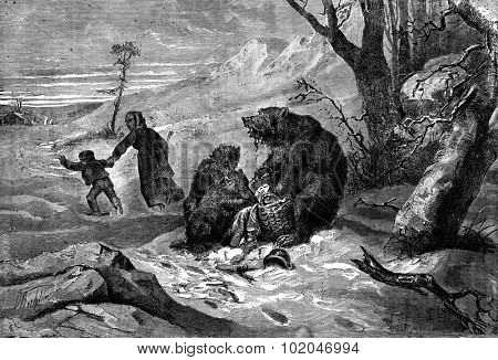 The bear and cubs. Lunch interrupted, vintage engraved illustration. Journal des Voyage, Travel Journal, (1880-81).