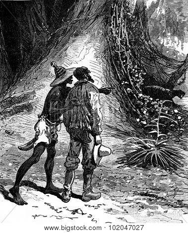 Robinsons guyana. Imagine vines clinging to it all, vintage engraved illustration. Journal des Voyage, Travel Journal, (1880-81).