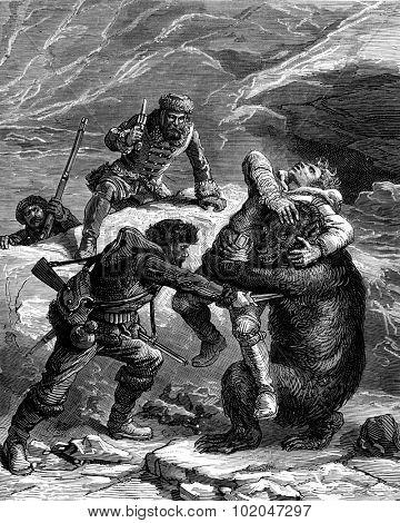 A bear hunt. Iron penetrates deep into the flesh, vintage engraved illustration. Journal des Voyages, Travel Journal, (1879-80).
