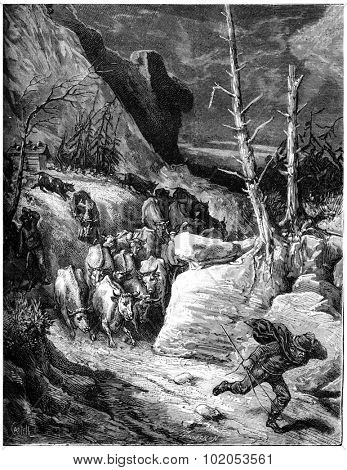 The mountains seem to leap, cows down by troops panicked and flow into the ravines, vintage engraved illustration. Journal des Voyage, Travel Journal, (1880-81).