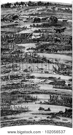 Progressive developments flora and fauna successive ages of the earth, vintage engraved illustration. Earth before man  1886.