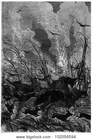 Scream, vintage engraved illustration. Jules Verne 3 Russian and 3 English, 1872.