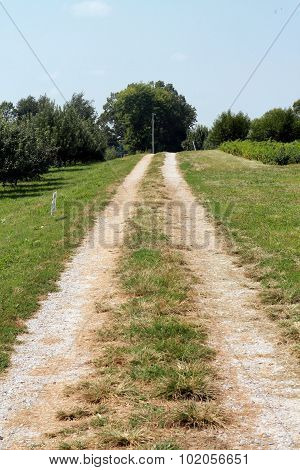 Dirt Road in the country