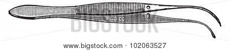 Forceps convenient for handling cover-glasses, blocks of tissues and sections, vintage engraved illustration.
