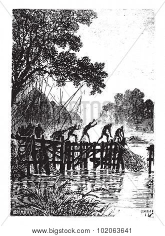 The natives, however, quickly hauled their nets, vintage engraved illustration. From 15 year's old captain book from Jules Verne.