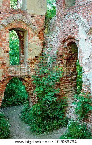 The ruins of the castle Balga