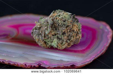 Granddaddy Purple Medicinal Medical Marijuana