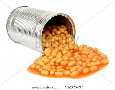 Baked Beans Pouring Out Of Can