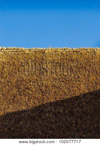 Fresh Thatch Roof