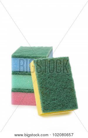 Sponges On White