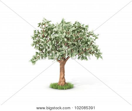 Dollar Tree With Hundred Dollar Bills Isolated Over White