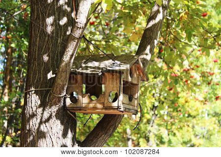 Birdhouse On A Tree In A Forest In Autumn
