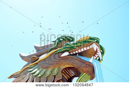 bird fly on dragon spurting water