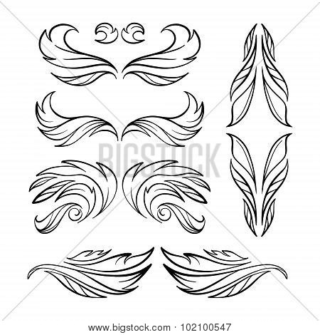 Vector calligraphy elements.