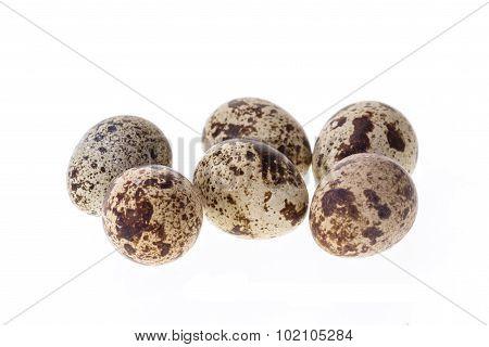 Quail Egg Isolated On White Background