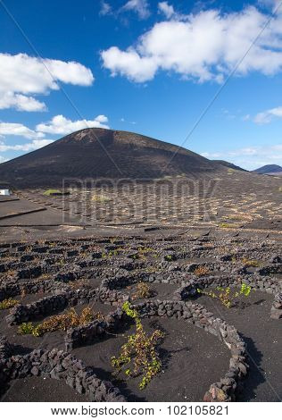 La Geria, Lanzarote, Canary Islands
