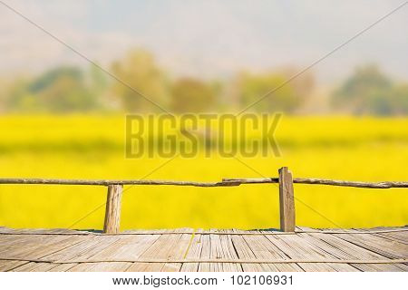 natural view of rapeseed plantation