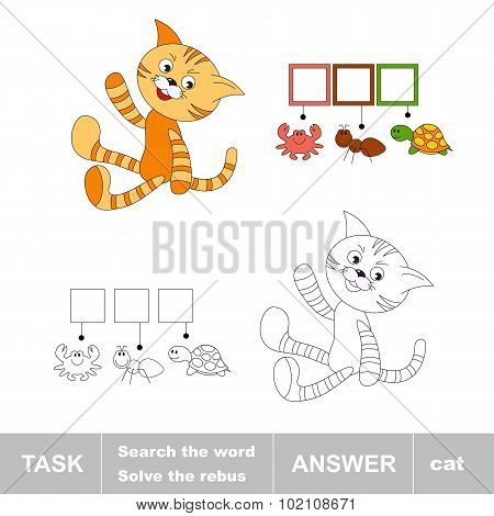 Orange cat. Task and answer.