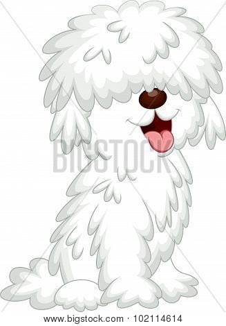 Cute komondor dog cartoon