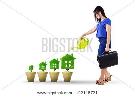 Businesswoman Pouring Water Into Tree House