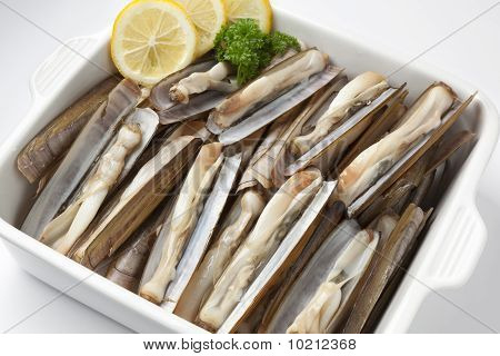 Dish with fresh cooked razor clams