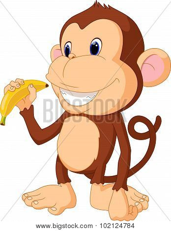 Funny Monkey eat banana