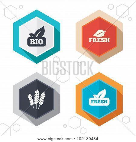 Natural fresh Bio food icons.