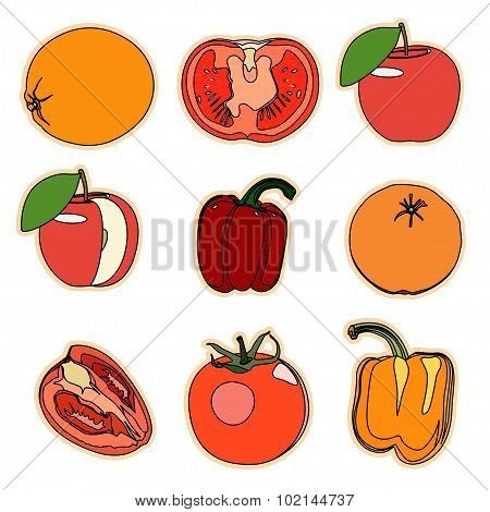 Collection of a set of cute vector illustration fruits and veget