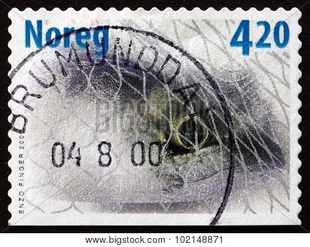Postage Stamp Norway 2000 Mackerel